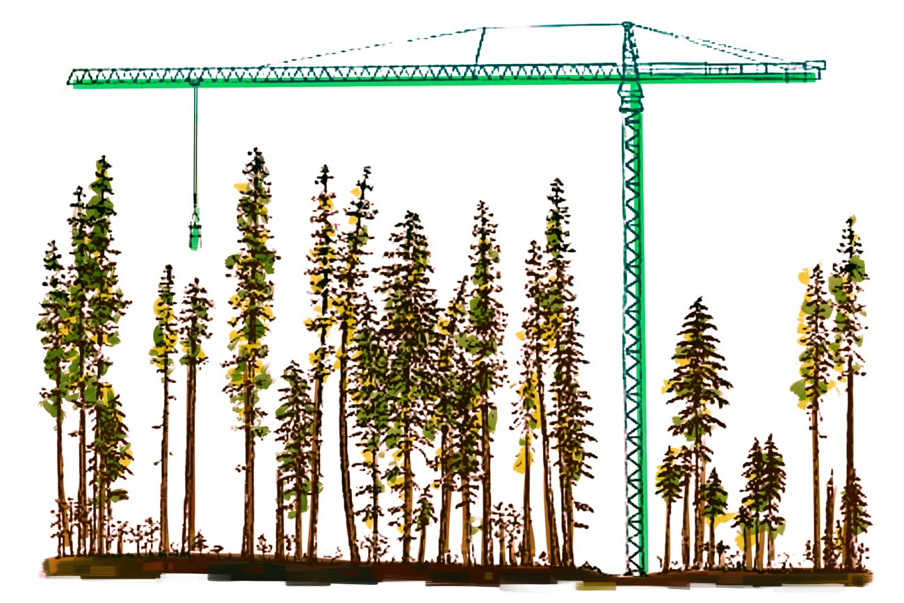 Artist's rendition the Wind River Canopy Crane
