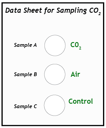 Sample data sheet for sampling CO2