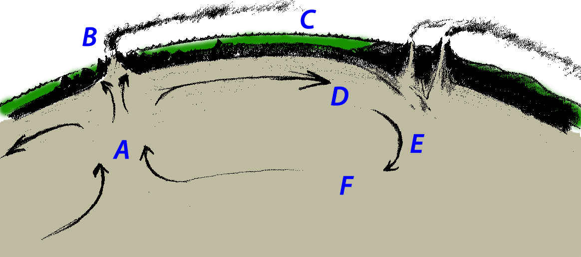 Diagram illustrating convection currents under the surface of the Earth