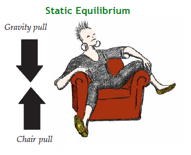 A figure at static equilibrium
